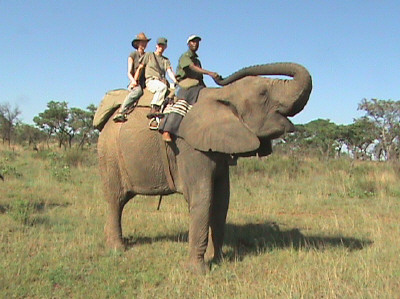 Shambala Elephant Back safaris